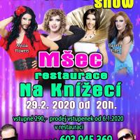 Travesti show 1